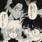 19巻:名探偵コナンー平次の幼馴染・和葉登場!浪花の連続殺人事件ー